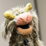 Fuzzy creature puppet!